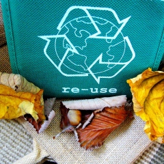 recycle-57136_1920
